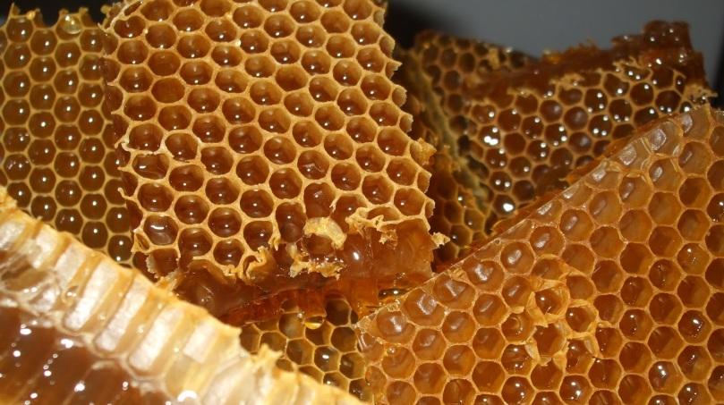 fagure de miere 02.jpg